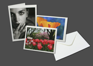 Art Cards Large 100/100 - Folded Size 5.5x7.375